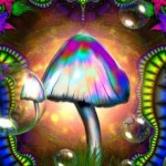 Must See Documentary About Psychedelics & Shamanism: Manifesting the Mind
