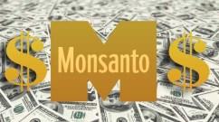 Monsanto money