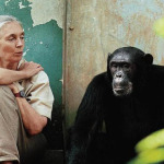 Jane Goodall: 5 Reasons To Have Hope For the Planet
