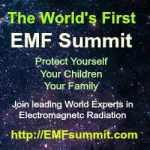 EMF summit banner
