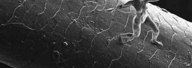 Artist Creates Nanosculptures Smaller Than a Human Hair