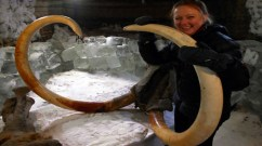 Dr Tori Herridge with the mammoth. Credit: Channel 4 Television