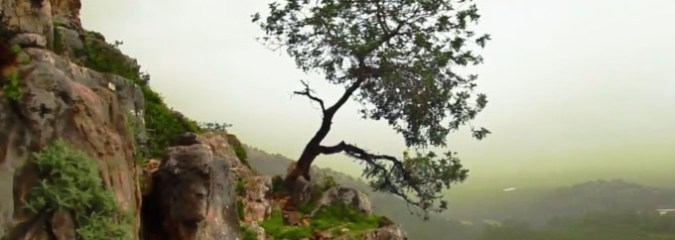 MUST SEE: A Passion For Life (Highly Inspirational, 4-Min Video)