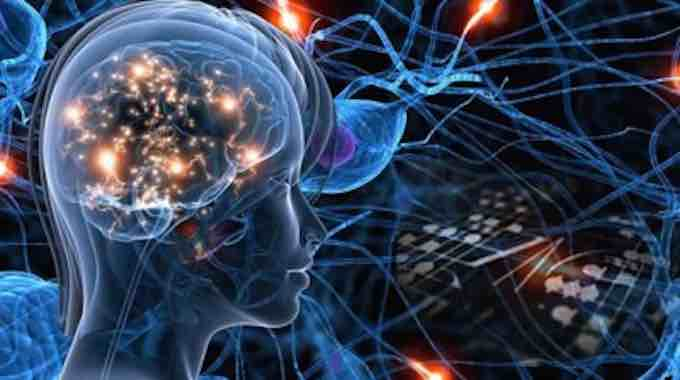 Your Brain IS The Universe: Physical Evidence Your Brain Is A Quantum Device Reflecting The Cosmos : Conscious Life News