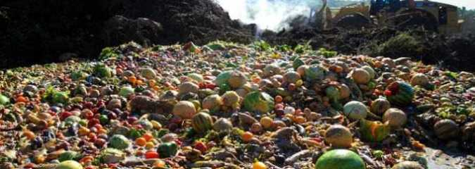 Talking Trash: Feds Announce Dramatic Goal To Curb Our Food-Waste Crisis