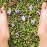 How Earthing Can Do Wonders For Your Overall Health