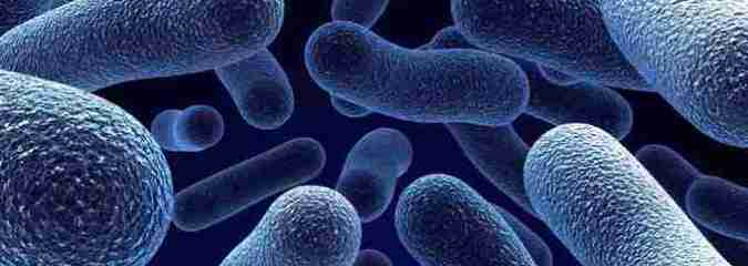 WHO Calls Antibiotic Resistance a World Health Crisis as Bacterial Strains Grow Stronger