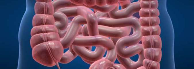 Is a Colon Cleanse Actually Beneficial? What You Must Know …
