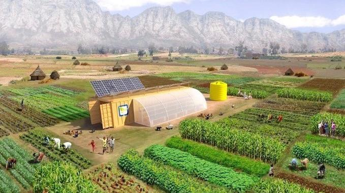 Farm from a Box is a modified shipping container with a built-in WiFi, irrigation system, solar panels, weather tracking devices, batteries and more. Photo credit: Farm from a Box