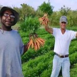 Homeless Given New Life after Working on a 22-Acre Organic Farm