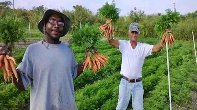 Verde Farms and homeless