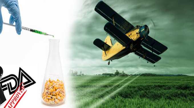 glyphosate pesticide