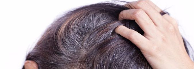 Here's Why Your Hair Turns Gray & How Stress, Genes, Diet and More Can Affect the Process