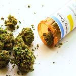 National Academy of Sciences Issues Landmark Statement on Medical Cannabis