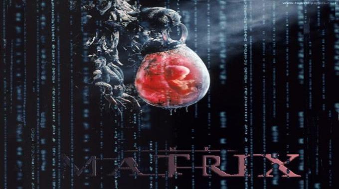 The Matrix-compressed
