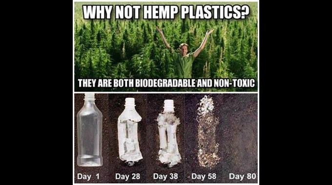 why not hemp plastics