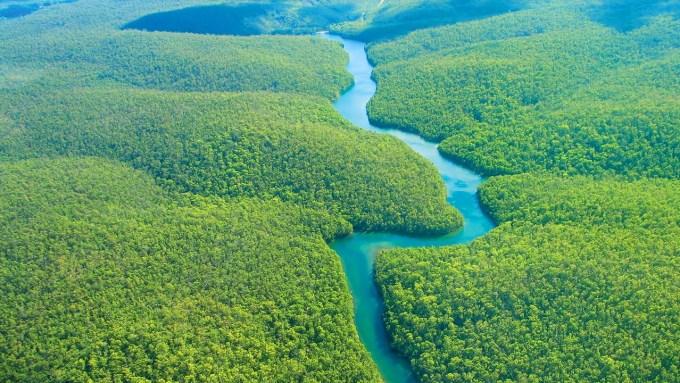 https://foundtheworld.com/wp-content/uploads/2015/12/Amazon-Rainforest-2.jpg