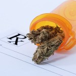 University Study Shows Legalized Marijuana Could Cut Medicare Costs by Billions (Here's Why)