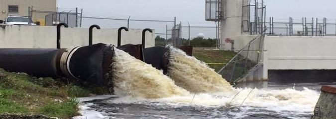 Florida Allows Even MORE Toxic Waste As Dangerous Algae Blooms Spread Across The State