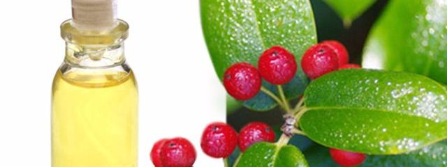 Lift Your Mood, Reduce Pain and More with Wintergreen Oil