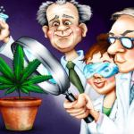 More Than 100 Peer-Reviewed Studies Conclude: Cannabis Cures Cancer