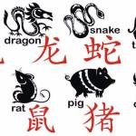 What Does Your Chinese Zodiac Sign Reveal for You in 2017?