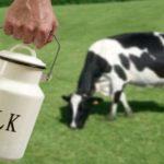 Big Dairy Continues War Against Farmers & Raw Milk