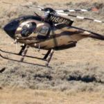 Advisory Board Recommends BLM Shoots  90,000 Healthy Wild Horses & Burros