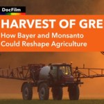 "Watch: ""Harvest of Greed"" – Provocative New Film Exposes the Dangers of the Monsanto-Bayer Merger"