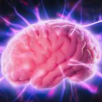 How to Boost Brain Health and Reverse Neurological Disease Without Drugs – Dr. Mercola