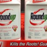 Judge Upholds Landmark Monsanto Verdict, But Slashes Punitive Damages by $211 Million