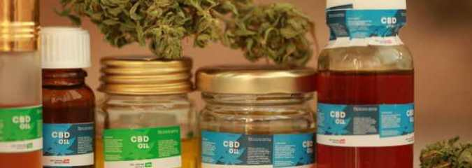 CBD Oil: Why Cancer Patients Are Seeking Natural Pain Relief