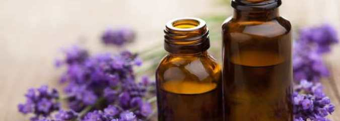 New Study: Smelling Lavender Really Can Relax You