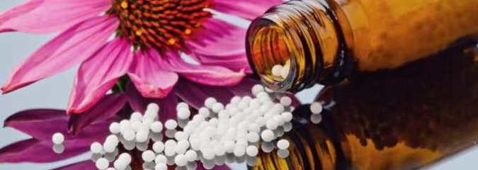 The Principles of Homeopathy + Evidence-Based Homeopathic Family Medicine