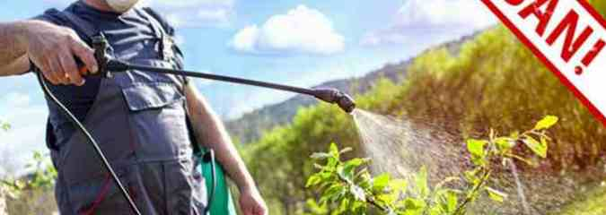 Crucial Report: Experts Call for a Ban on Organophosphate Pesticides