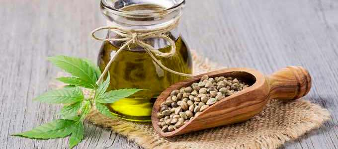 What is Hemp and its Benefits?