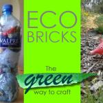 Eco Bricks Just Might Help Save the Planet and YOU Can Start Yours Today!