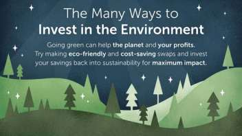 Debunking the Myth that Profitability & Environmental Sustainability Don't Go Together