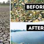 A Young Man from India Is Saving Dead Lakes, and Here's His Story