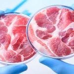 The Fake Food Race Is a  Race Toward Extinction Worth $3 trillion