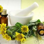 Arnica: This Powerful Herb Promotes Various Kinds of Healing
