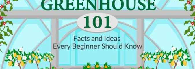 Greenhouse 101 – Facts and Ideas Every Beginner Should Know