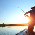 'Landmark New Research' Links Neonics With Collapse of Fisheries