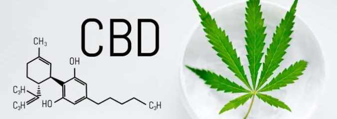 What Are the Most Active Ingredients in CBD Cream?