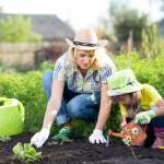 The Impulse to Garden in Hard Times Has Deep Roots