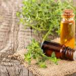 Thyme Extract Helps Treat COVID-19