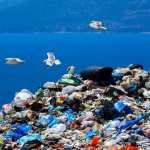 Microplastic Pollution is Escalating Around the World, Study Suggests