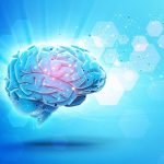 Five Ways to Keep Your Brain Healthy as You Age