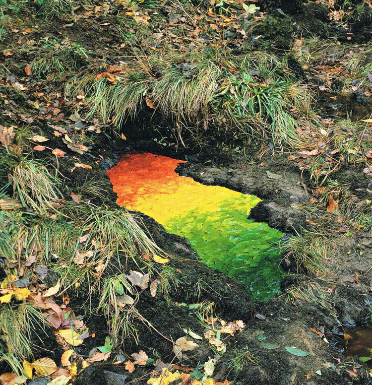 Rivers and Tides-andy-goldsworthy-3