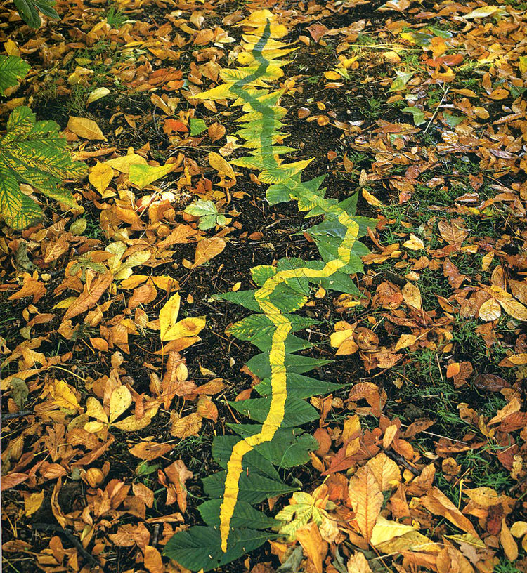 Rivers and Tides-andy-goldsworthy-7
